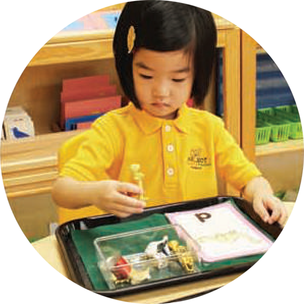 Language Arts - PRIMARY - Montessori Preschool Pasadena CA